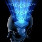 cerveau idées